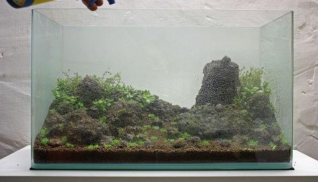Грунт для аквариума с живыми растениями своими руками 99