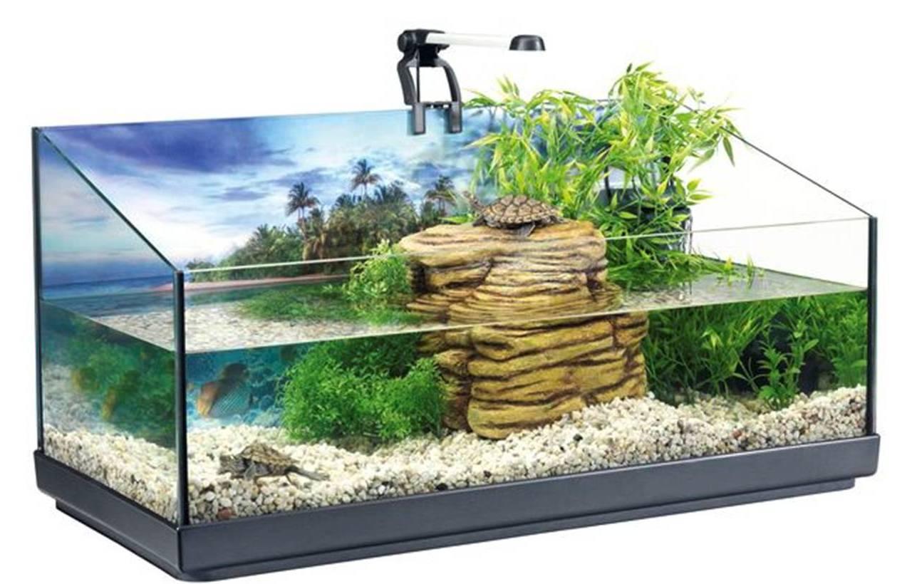 Как смягчить воду в аквариуме 70